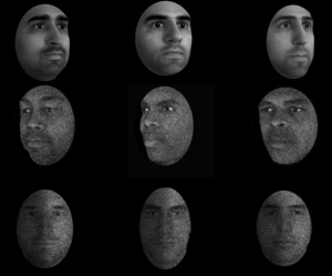 faces_jansari
